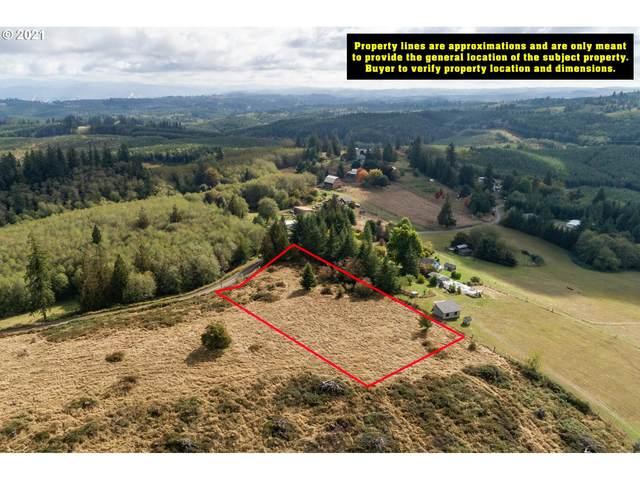 Stewart Creek Rd, Clatskanie, OR 97016 (MLS #21490690) :: Holdhusen Real Estate Group