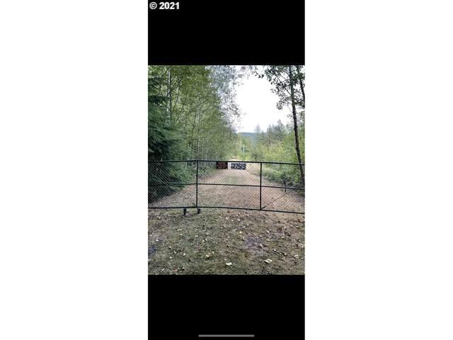 27513 NE 212TH Ave, Battle Ground, WA 98604 (MLS #21492400) :: Gustavo Group