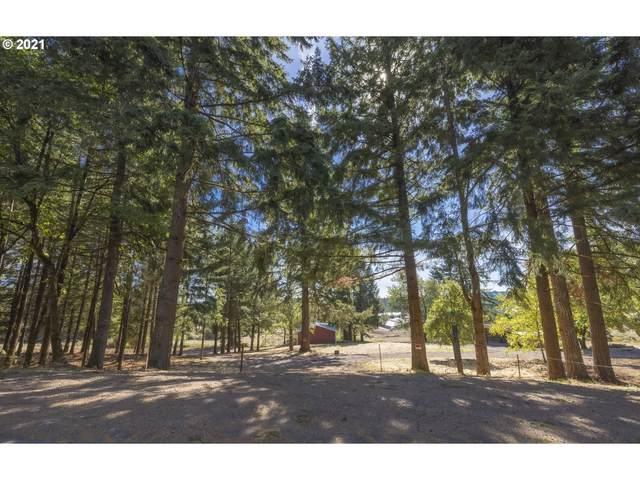 27217 NE 19TH St, Camas, WA 98607 (MLS #21499227) :: McKillion Real Estate Group