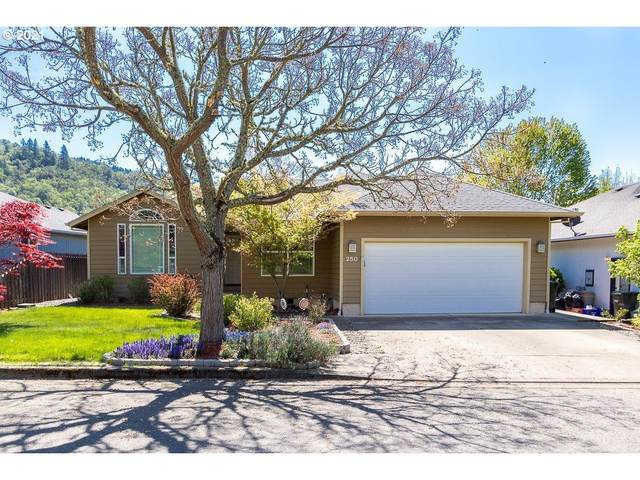 250 Village Dr, Winchester, OR 97495 (MLS #21508244) :: Townsend Jarvis Group Real Estate