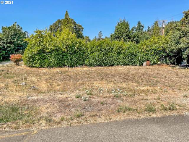 110 Byron St, Canyonville, OR 97417 (MLS #21523147) :: Premiere Property Group LLC