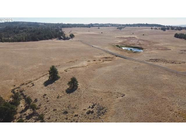 Glen Affric Llc, Goldendale, WA 98620 (MLS #21524506) :: Next Home Realty Connection