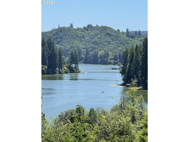0 Heavy Horse #100, Lakeside, OR 97449 (MLS #21532575) :: The Pacific Group