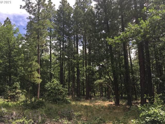241 Pine Creek Rd, Bickleton, WA 99322 (MLS #21536115) :: Next Home Realty Connection