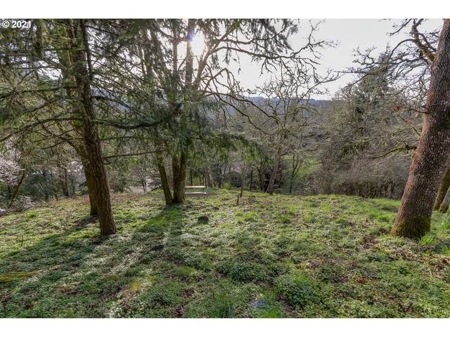 Emerald, Eugene, OR 97405 (MLS #21536508) :: Premiere Property Group LLC