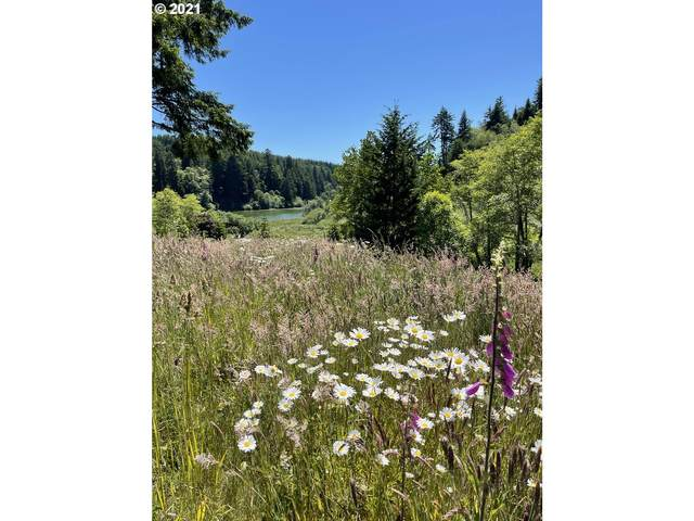 71399 Heavy Horse Rd #300, Lakeside, OR 97449 (MLS #21551469) :: The Pacific Group