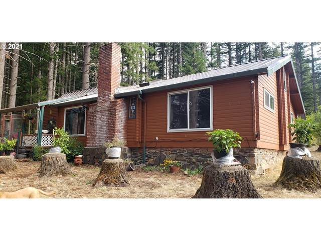 48430 SE Tumala Mountain Rd, Estacada, OR 97023 (MLS #21558607) :: Lux Properties