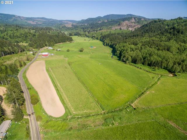 690 E Valley, Skamokawa, WA 98647 (MLS #21559314) :: Stellar Realty Northwest