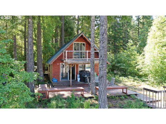 Cabin 29 Northwoods, Cougar, WA 98616 (MLS #21559761) :: Real Estate by Wesley