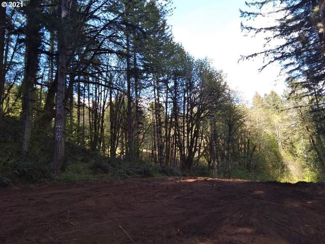 Wilson River Hwy, Tillamook, OR 97141 (MLS #21564801) :: The Pacific Group
