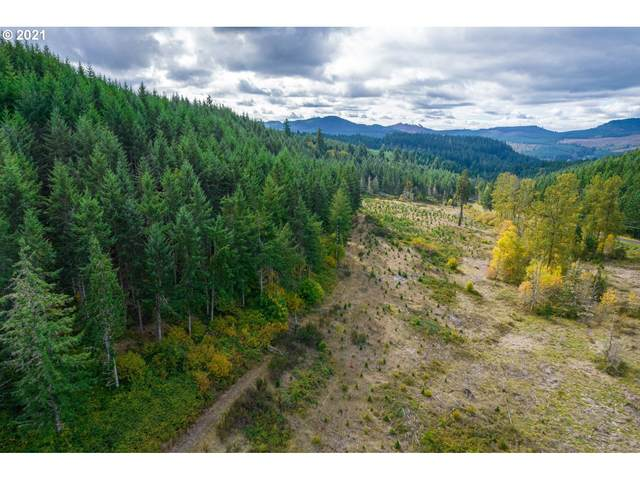 Garoutte Rd Tl600, Cottage Grove, OR 97424 (MLS #21596501) :: Premiere Property Group LLC