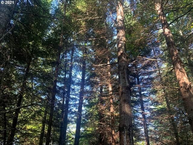 Big Fall Creek Rd, Fall Creek, OR 97438 (MLS #21598584) :: Song Real Estate