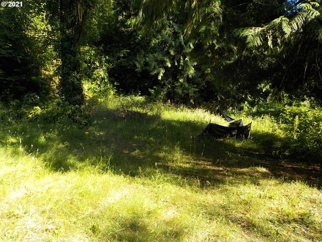 25207 SE Sunshine Valley Rd, Damascus, OR 97089 (MLS #21603219) :: Beach Loop Realty