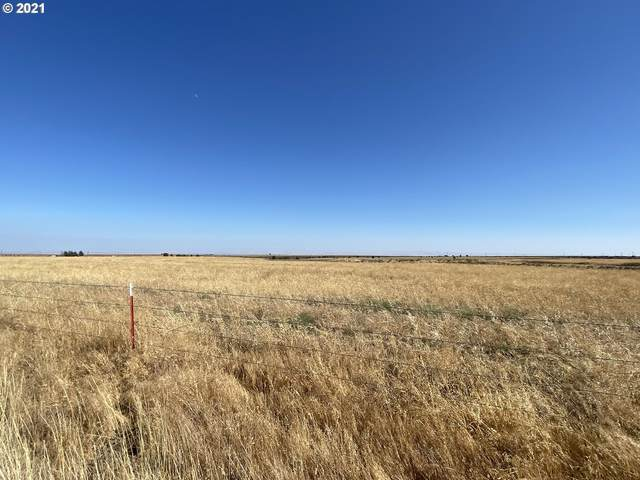 Crider Valley Rd Lot 2, Bickleton, WA 99322 (MLS #21604359) :: Next Home Realty Connection