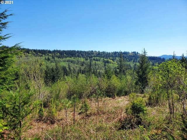 Mabee Mines Rd, Washougal, WA 98671 (MLS #21610990) :: Premiere Property Group LLC