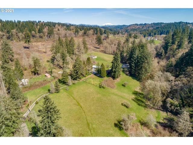 2401 NW Wellman Rd, La Center, WA 98629 (MLS #21613184) :: Townsend Jarvis Group Real Estate