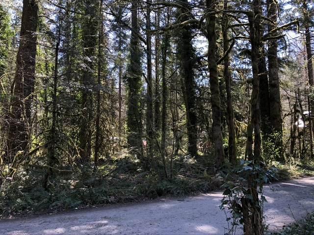 0 E Relton Lane, Rhododendron, OR 97049 (MLS #21615015) :: Premiere Property Group LLC