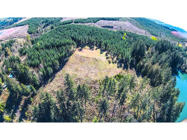 39800 Hwy 58, Lowell, OR 97452 (MLS #21623383) :: Song Real Estate