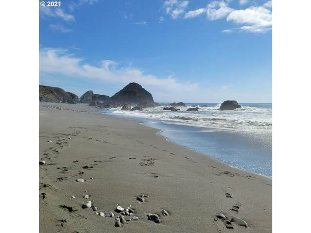 Tinsly Ln, Gold Beach, OR 97444 (MLS #21629657) :: Cano Real Estate