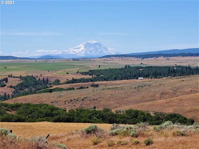 81 Gnarly Oaks, Goldendale, WA 98620 (MLS #21634207) :: Tim Shannon Realty, Inc.