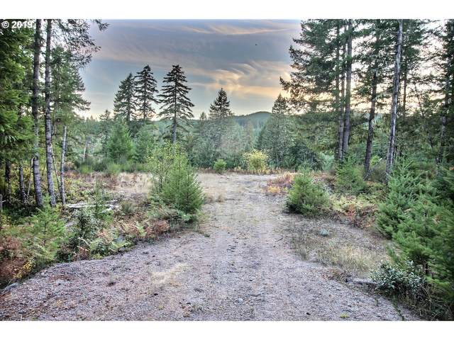 Nymark Dr, Cougar, WA 98616 (MLS #21647175) :: Next Home Realty Connection