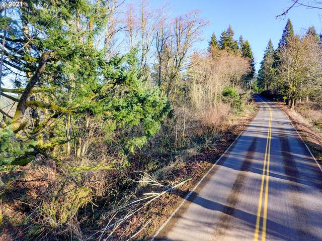E Larch Mountain Rd, Corbett, OR 97019 (MLS #21650907) :: Cano Real Estate