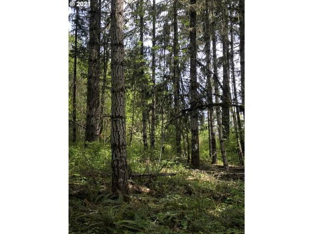 Old Military Rd, Sheridan, OR 97378 (MLS #21654542) :: Fox Real Estate Group