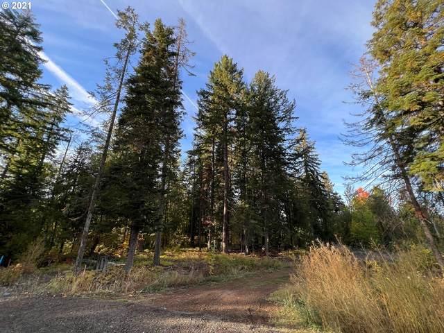 Clear Creek Rd, Mt Hood Prkdl, OR 97041 (MLS #21654672) :: Holdhusen Real Estate Group
