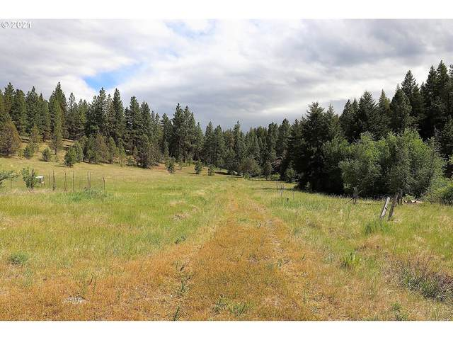 23009 Nan S Rock Rd, Mount Vernon, OR 97865 (MLS #21659133) :: The Pacific Group