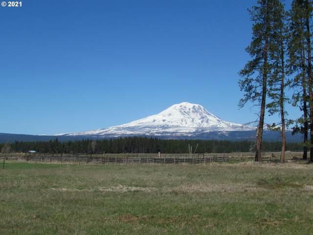 1 East Adams View Dr, Glenwood , WA 98619 (MLS #21678837) :: Stellar Realty Northwest