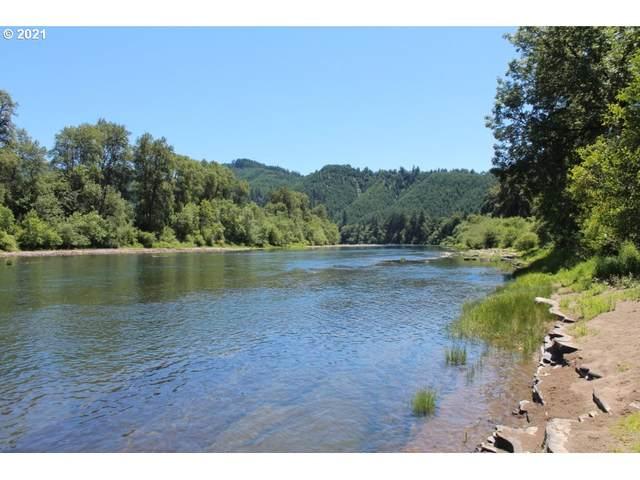 830 Riverwood Ln, Oakland, OR 97462 (MLS #21689868) :: Premiere Property Group LLC