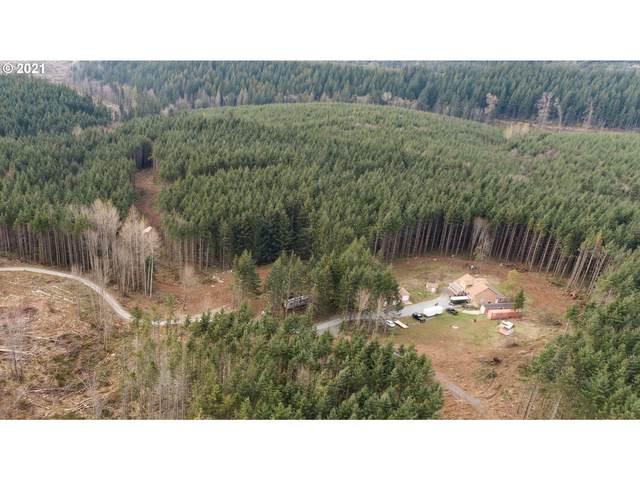 19321 S Ramsby Rd, Molalla, OR 97038 (MLS #21690967) :: Tim Shannon Realty, Inc.
