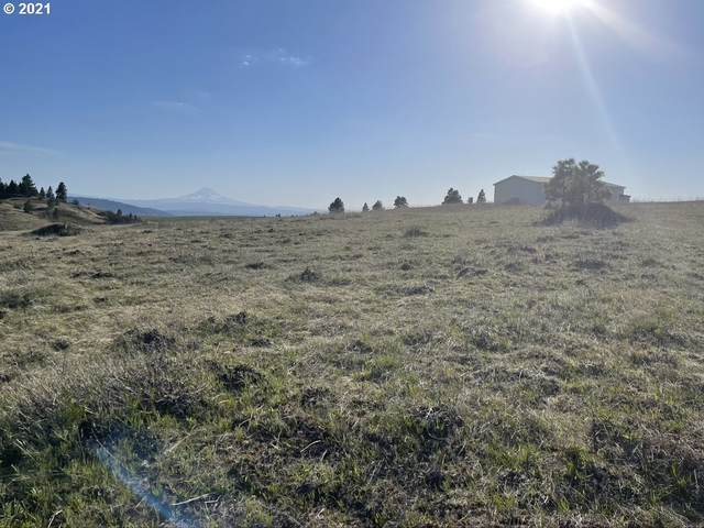 Johnson Creek Rd, Lyle, WA 98635 (MLS #21693544) :: Next Home Realty Connection