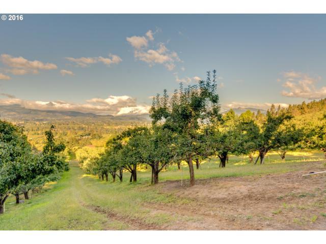 1400 Hidden Oaks Dr #1, Hood River, OR 97031 (MLS #16132105) :: Realty Edge