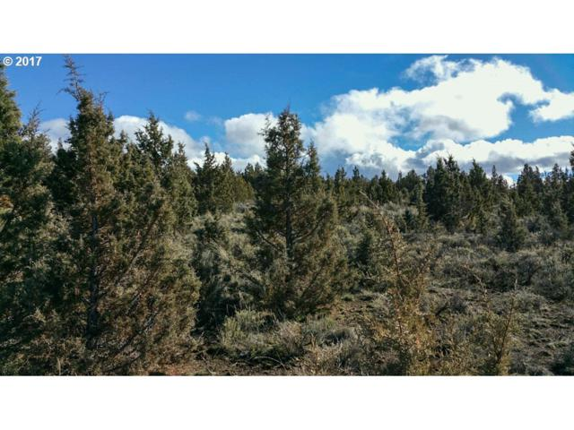 13301 SE Ethan Loop, Prineville, OR 97754 (MLS #16346806) :: Cano Real Estate