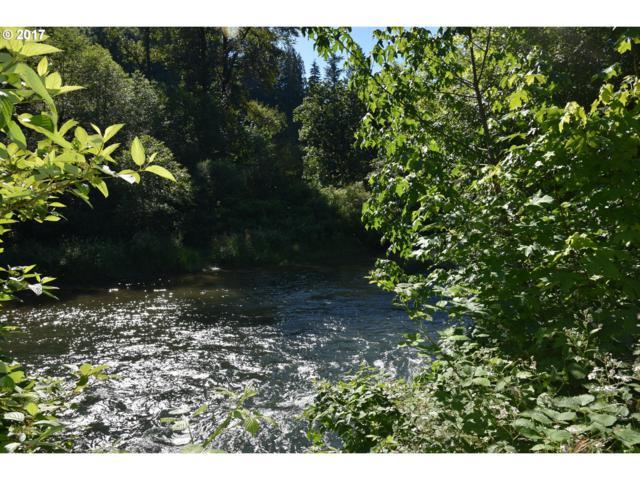 0 Kalama River Rd, Kalama, WA 98625 (MLS #17439659) :: Hatch Homes Group
