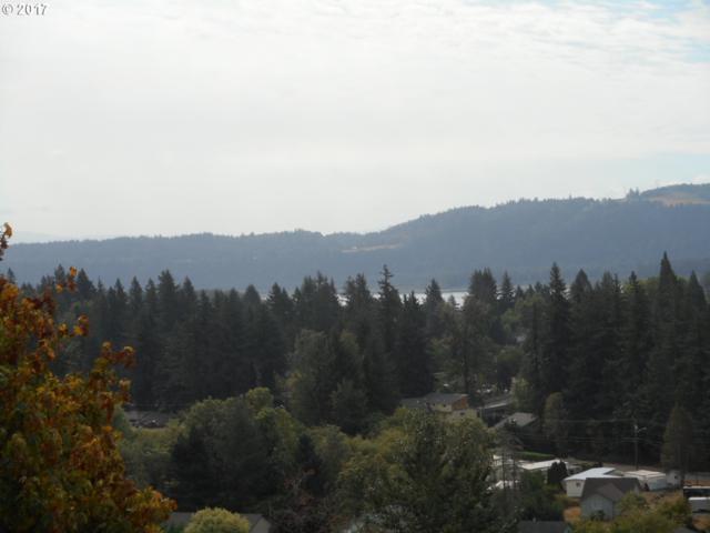 1420 N Columbia Ridge Way, Washougal, WA 98671 (MLS #17506864) :: The Dale Chumbley Group