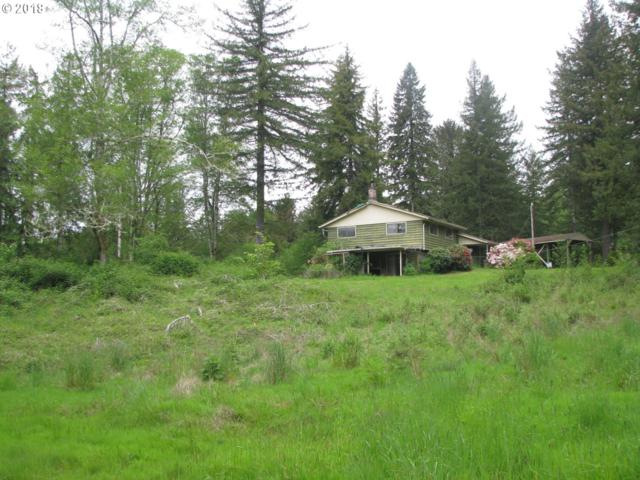 18000 Cedar Creek Rd, Hebo, OR 97122 (MLS #18091193) :: Team Zebrowski