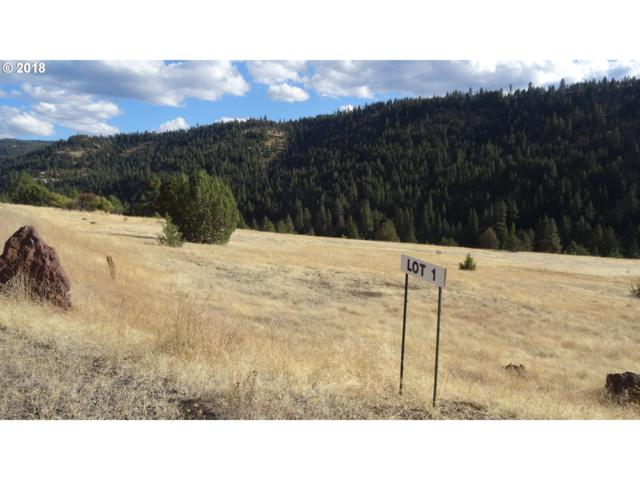 0 Martin Ln #1, Long Creek, OR 97856 (MLS #18177328) :: Realty Edge