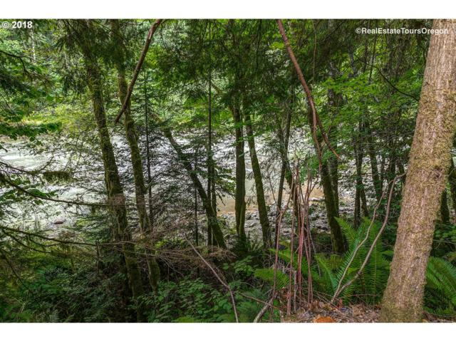 64690 E Sandy River Ln #216, Rhododendron, OR 97049 (MLS #18220767) :: The Dale Chumbley Group