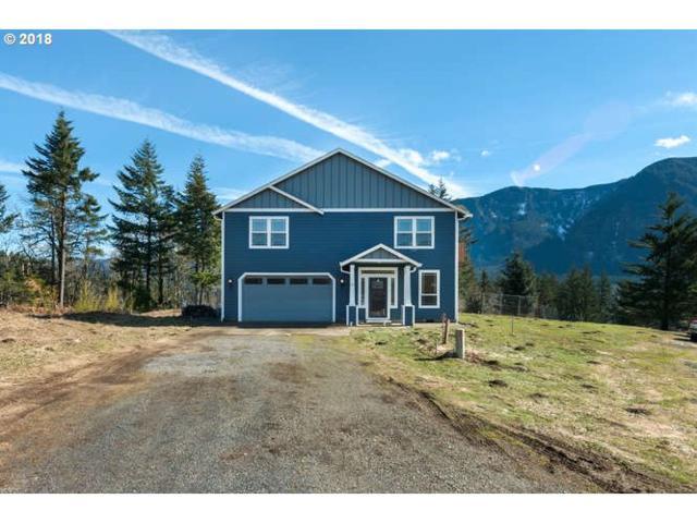 81 Nesmith Rd, Skamania, WA 98648 (MLS #18281681) :: Premiere Property Group LLC