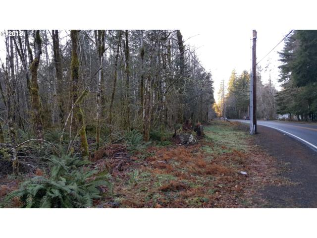 22463 E Brightwater Way, Rhododendron, OR 97049 (MLS #18290349) :: Hatch Homes Group