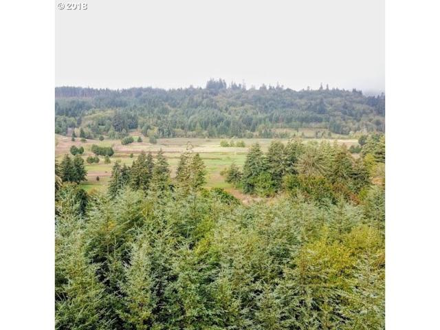 0 Coos Sumner Rd, Coos Bay, OR 97420 (MLS #18292983) :: The Haas Real Estate Team