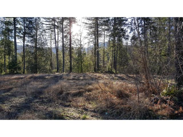 22566 E Brightwater Way, Rhododendron, OR 97049 (MLS #18322913) :: Hatch Homes Group