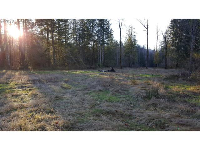 22479 E Brightwater Way, Rhododendron, OR 97049 (MLS #18389292) :: Hatch Homes Group
