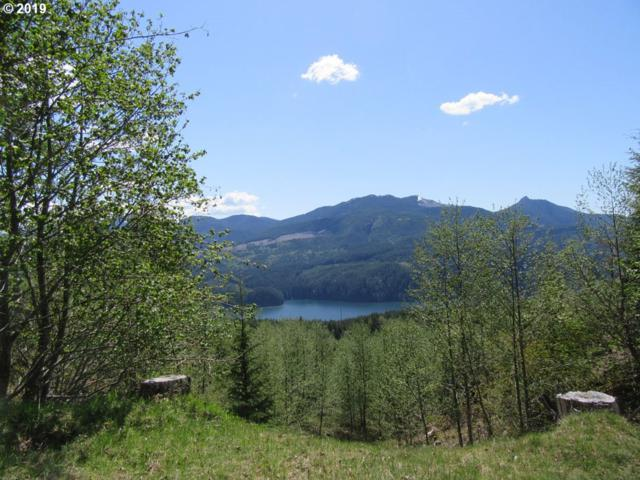4 Marble Mtn Rd, Cougar, WA 98616 (MLS #18435987) :: Townsend Jarvis Group Real Estate