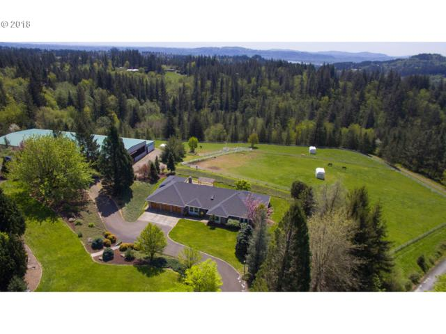 33207 SE 6TH St, Washougal, WA 98671 (MLS #18457754) :: Next Home Realty Connection