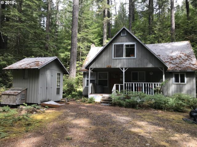 Cabin 142 Northwoods, Cougar, WA 98616 (MLS #18518818) :: Matin Real Estate