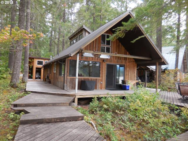 Cabin 7 Northwoods, Cougar, WA 98616 (MLS #18520892) :: Matin Real Estate