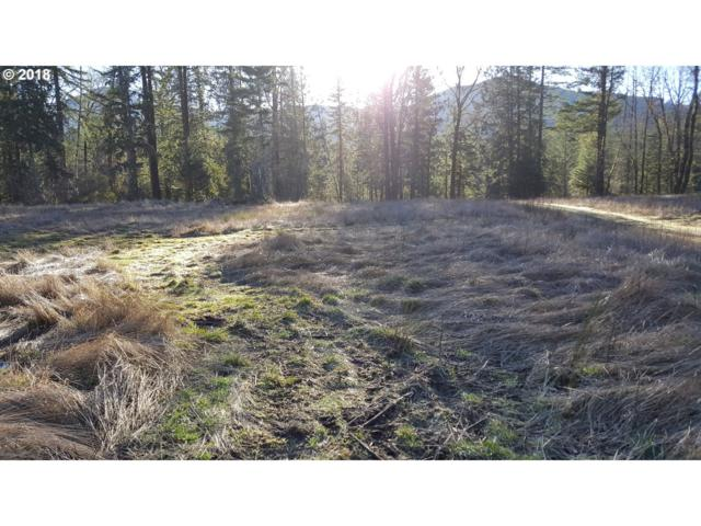 22542 E Brightwater Way, Rhododendron, OR 97049 (MLS #18527138) :: Hatch Homes Group